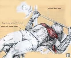похудение плеч