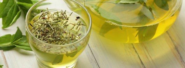 Зеленый чай — помощник в похудении